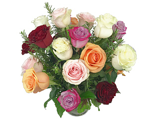 a beautiful arrangement of mixed yet compatible colors